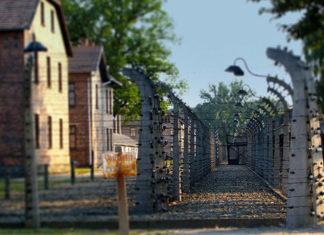 Zwiedzanie Auschwitz